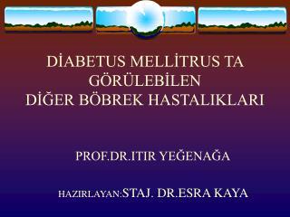 DİABETUS MELLİTRUS TA  GÖRÜLEBİLEN DİĞER BÖBREK HASTALIKLARI