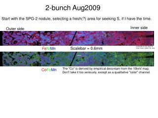 2-bunch Aug2009