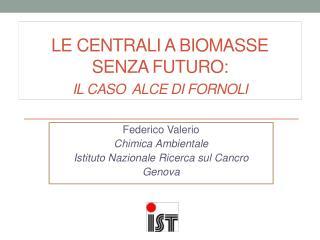 Le centrali a Biomasse  senza futuro: i l caso  ALCE di Fornoli