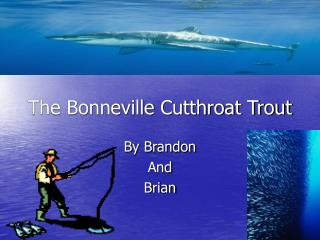 The Bonneville Cutthroat Trout