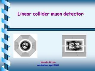 Linear collider muon detector: