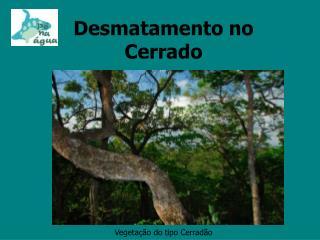 Desmatamento no Cerrado