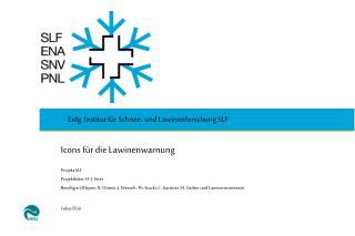 Icons für die Lawinenwarnung Projekt SLF  Projektleiter: H.-J. Etter