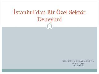 İstanbul'dan Bir Özel Sektör Deneyimi