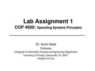 Lab Assignment 1 COP 4600:  Operating Systems Principles