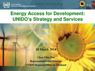 Energy Access for Development: UNIDO�s Strategy and Services