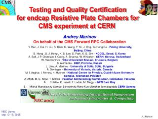 Testing and Quality Certification for endcap Resistive Plate Chambers for CMS experiment at CERN