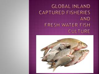 Global inland captured fisheries and Fresh Water fish culture
