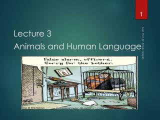 Lecture 3 Animals and Human Language