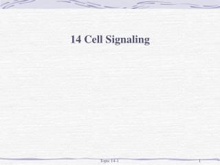 14 Cell Signaling