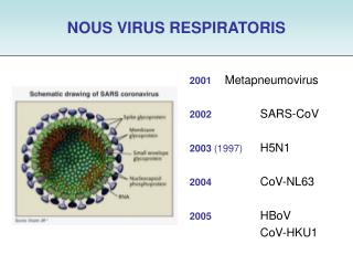 NOUS VIRUS RESPIRATORIS