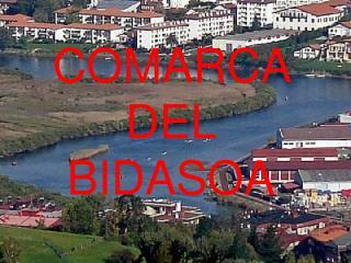 COMARCA DEL BIDASOA