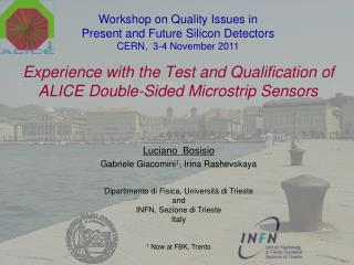 Experience with the Test and Qualification of  ALICE  Double-Sided Microstrip Sensors
