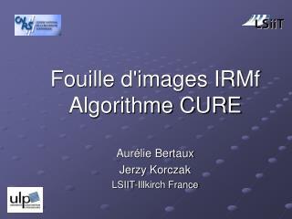 Fouille d'images IRMf Algorithme CURE Aurélie Bertaux Jerzy Korczak LSIIT-Illkirch France