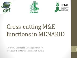 Cross-cutting M&E functions in MENARID