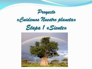 Proyecto «Cuidemos Nuestro planeta» Etapa 1 «Siente»