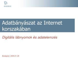 Adatbányászat az Internet korszakában