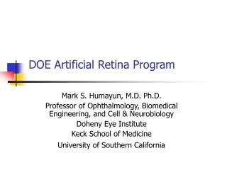 DOE Artificial Retina Program