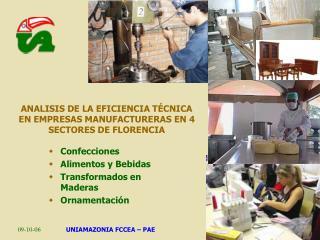ANALISIS DE LA EFICIENCIA T CNICA EN EMPRESAS MANUFACTURERAS EN 4 SECTORES DE FLORENCIA