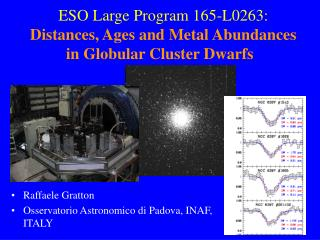 ESO Large Program 165-L0263: Distances, Ages and Metal Abundances in Globular Cluster Dwarfs
