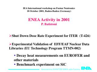 IEA International workshop on Fusion Neutronics 18 October 2001, Baden-Baden (Germany)