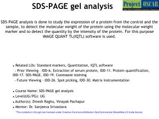 SDS-PAGE gel analysis