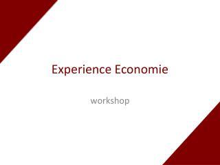 Experience  Economie