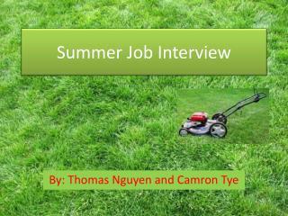 Summer Job Interview