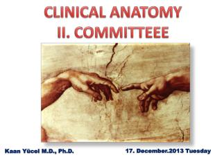 CLINICAL ANATOMY II. COMMITTEEE