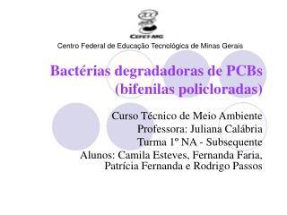 Bactérias degradadoras de PCBs (bifenilas policloradas) 