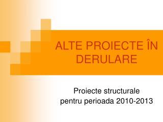 ALTE PROIECTE  N DERULARE