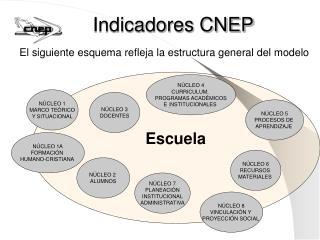 Indicadores CNEP