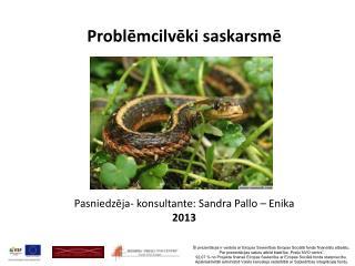 Problēmcilvēki  saskarsmē Pasniedzēja- konsultante: Sandra  Pallo  –  Enika 2013