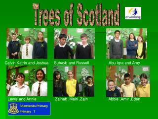 Trees of Scotland