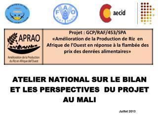 ATELIER  NATIONAL SUR LE BILAN  ET LES PERSPECTIVES  DU PROJET  AU MALI Juillet 2013
