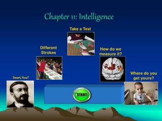 Chapter 11: Intelligence
