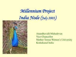 Millennium Project  India Node July 2003