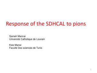 Response of the SDHCAL to pions