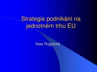 Strategie podnikání na jednotném trhu EU