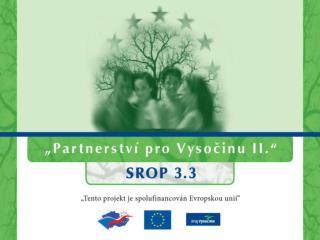 Příprava České republiky na výkon předsednictví v Radě Evropské unie leden – červen 2009