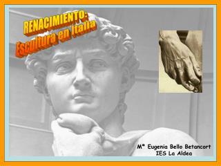 M  Eugenia Bello Betancort IES La Aldea