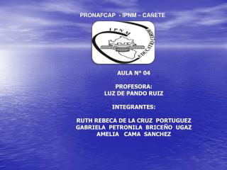 AULA N° 04  PROFESORA: LUZ DE PANDO RUIZ INTEGRANTES: RUTH REBECA DE LA CRUZ  PORTUGUEZ