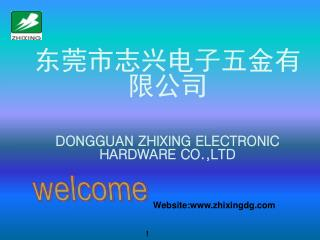 东莞市志兴电子五金有限公司 DONGGUAN ZHIXING ELECTRONIC HARDWARE CO.,LTD