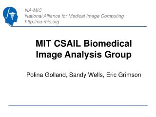 MIT CSAIL Biomedical Image Analysis Group