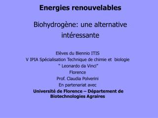 Energies renouvelables Biohydrogène: une alternative intéressante