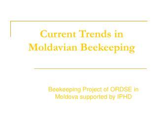 Current Trends in Moldavian Beekeeping