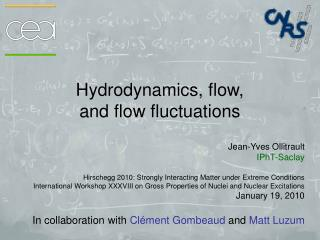 Hydrodynamics, flow,  and flow fluctuations