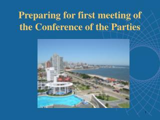 Preparing for first meeting of the Conference of the Parties