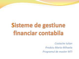 S isteme  de  gestiune financiar contabila