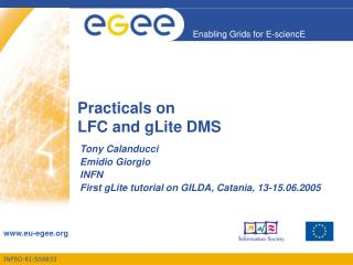 Practicals on LFC and gLite DMS